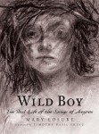 Wild Boy by Mary Losure book cover